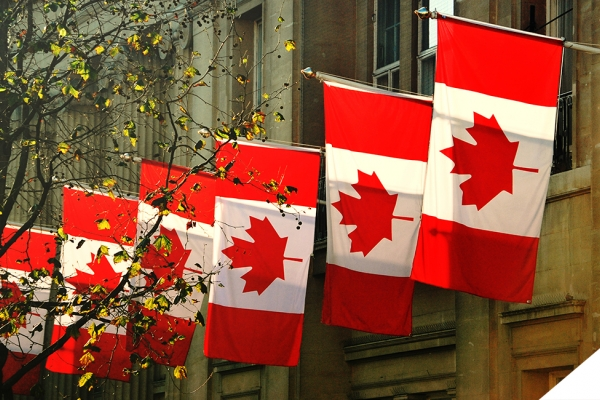 row of Canada flags on building